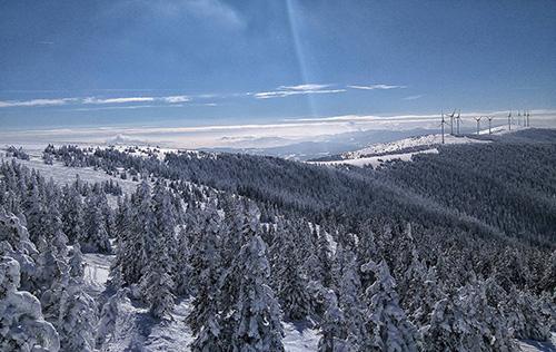 Stuhleck, Semmering, príroda hore