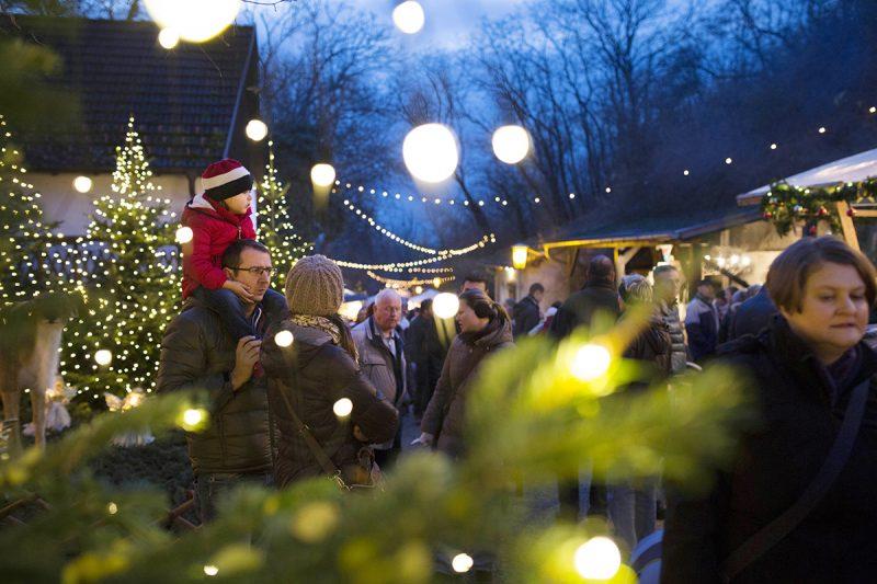 Vianočné trhy v Dolnom Rakúsku.
